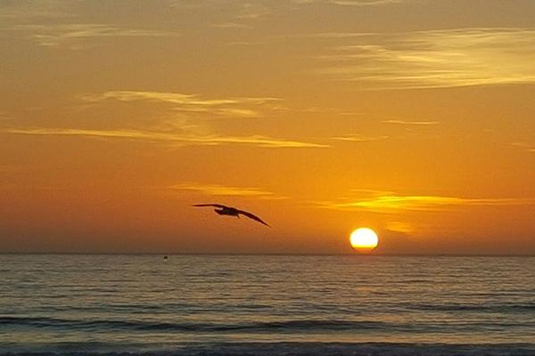 Sunset3 600x400